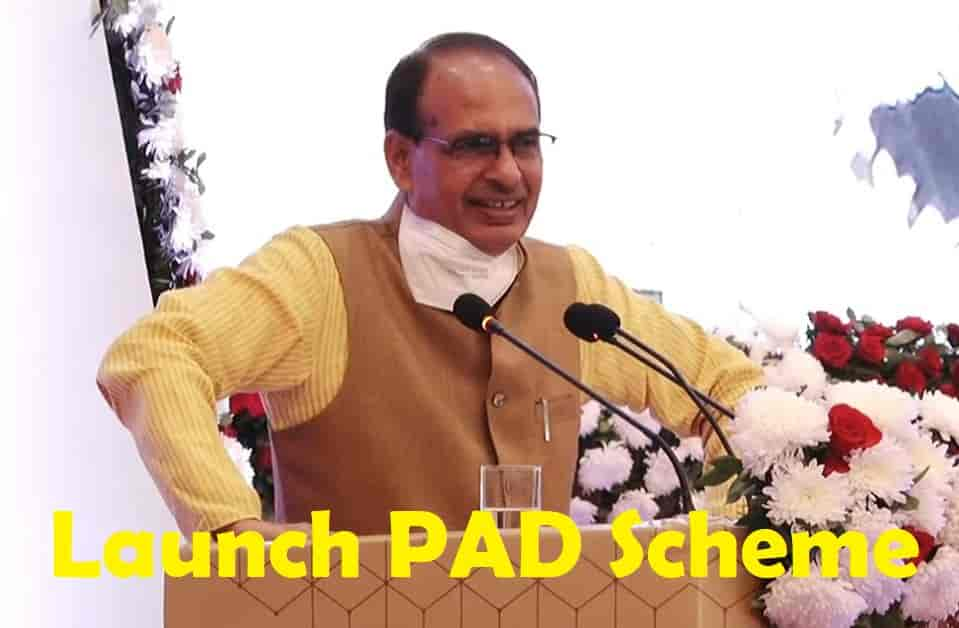 Launch Pad Scheme